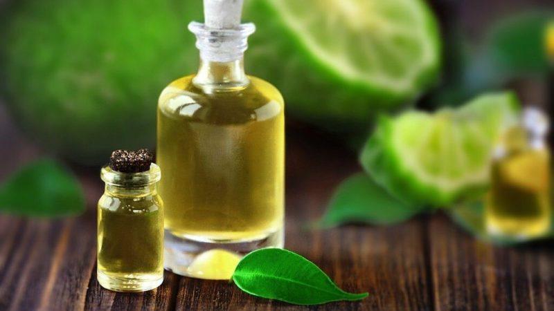 Бергамот: чем полезно масло этого растения
