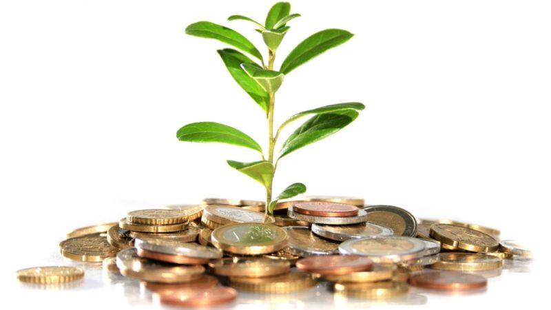 Особенности и разновидности инвестиций