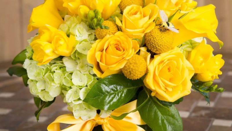 Можно ли дарить желтые цветы